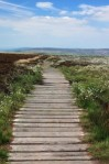 boardwalk-21583_640-199x300