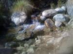 Palm Springs 068