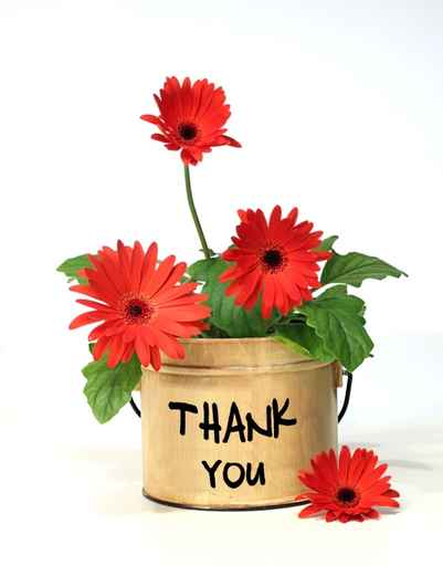 Thank you mandy eve barnett s official