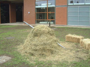 "Sadly, the needle is not always so easy to find -- but forums and niche communities can go a long way toward shrinking your virtual haystack. ""Needle in a Haystack,"" James Lumb ."