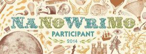 Nano 2014 banner