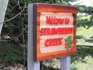 Creek sign