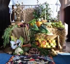 Harvest UK