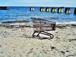 beach trolley