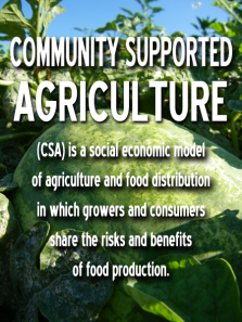 Community-Supported-Agriculture-button