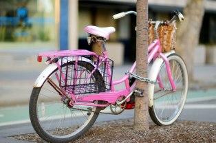 bike-locked-to-tree-small